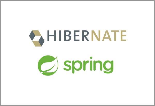 Java  Spring & Hibernate training